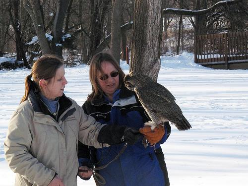 Dawn with Kim and Junior at the Raptor internship
